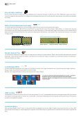 Vision 2010 - Asogem - Page 2