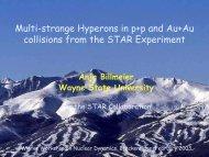 Billmeier - RHIG AT YALE - Yale University