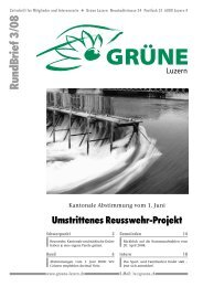 Nr. 3/2008 - Grüne Luzern