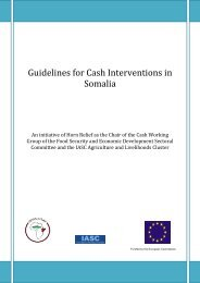Guidelines for Cash Interventions in Somalia - Food Security Clusters