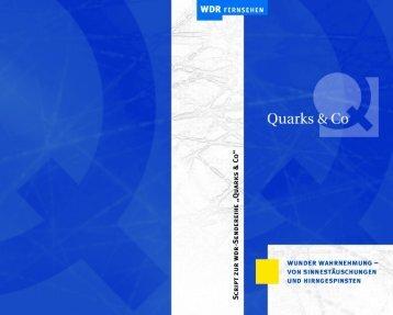 Quarks & Co - Wunder Wahrnehmung