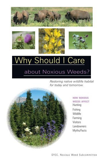 Why Should I Care about Noxious Weeds - Center for Invasive Plant ...