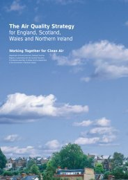 The Air Quality Strategy - Burning Issues