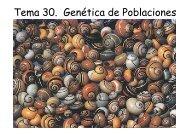 Tema 30. Genética de Poblaciones