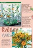 Léto - Zahradnictví Chládek - Page 2