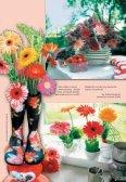 Léto - Zahradnictví Chládek - Page 3
