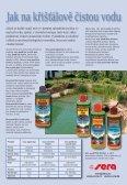 Léto - Zahradnictví Chládek - Page 5