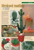 Léto - Zahradnictví Chládek - Page 7