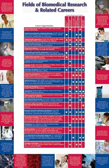 Biomedical Engineering Fields of Study