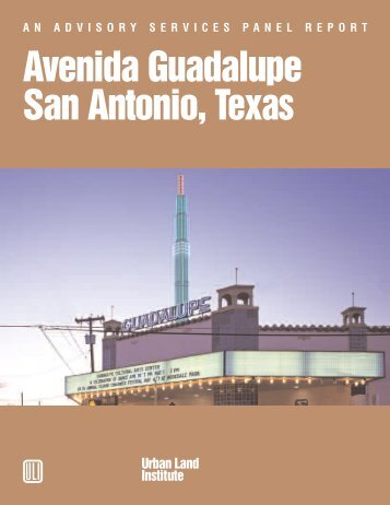 AN ADVISORY SERVICES PANEL REPORT Avenida Guadalupe ...