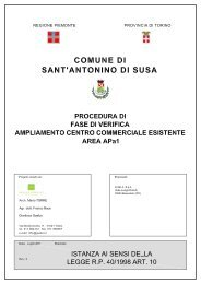 Relazione ex Art. 10 l.r 40/1998 - VIA - Regione Piemonte