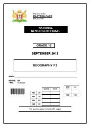 Platinum Geography Grade 12 Learner's Book