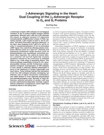 β-Adrenergic Signaling in the Heart: Dual Coupling of the β2 ...