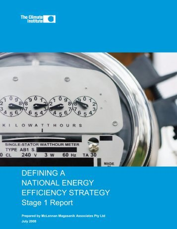 DEFINING A NATIONAL ENERGY EFFICIENCY STRATEGY Stage 1 ...