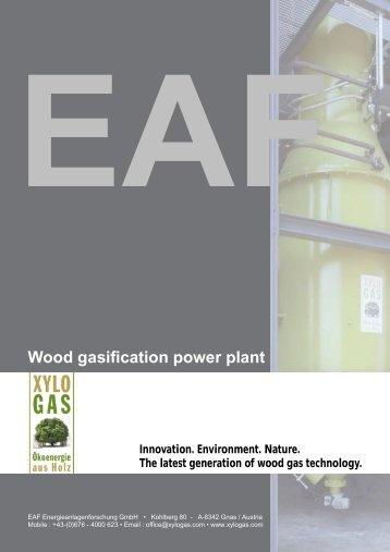 Broschüre - Holzvergasung - Seite 1-5 - Englisch