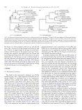 Phylogeny of the Procyonidae (Mammalia: Carnivora): Molecules ... - Page 7