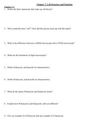 Chapter 7 cell structure and function vocabulary review worksheet answer key