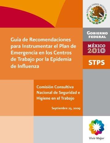 guía de recomendaciones para instrumentar plan contra influenza