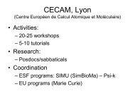 CECAM, Lyon - e-Infrastructure Reflection Group