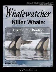 Killer Whale: - Orca Network