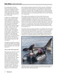 Killer Whale: - Orca Network - Page 6