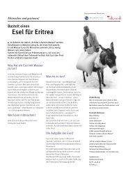 Bastelt einen Esel für Eritrea - Verantwortung.muc.kobis.de