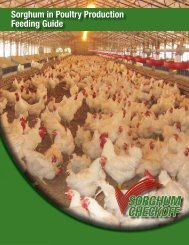 Sorghum in Poultry Production Feeding Guide - Sorghum Checkoff