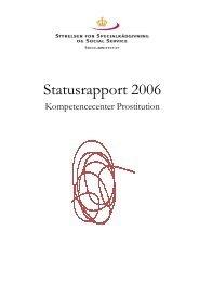 Statusrapport 2006 - Servicestyrelsen