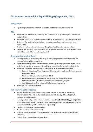 Mandat for nettverket - Sykehjemsetaten