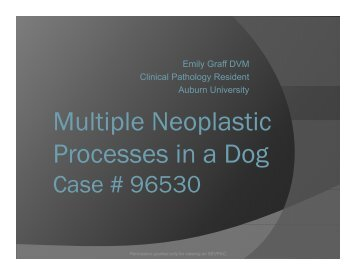 Multiple Neoplastic Multiple Neoplastic Processes in a Dog