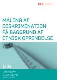 Måling af diskrimination på baggrund af etnisk oprindelse - Social