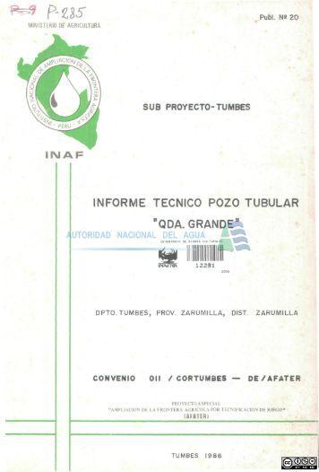 informe tecnico pozo tubular - Autoridad Nacional del Agua