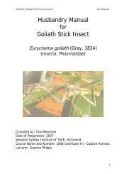 Husbandry Manual Goliath Stick Insect - Nswfmpa.org