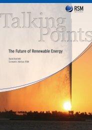 The Future of Renewable Energy - RSM International