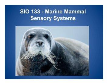 SIO 133 - Marine Mammal Sensory Systems
