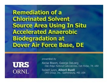 Remediation of Chlorinated Solvent Source Area Using In Situ ...