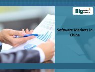 Research Report on Software Markets in China,Analysis,Size