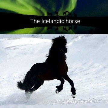The Icelandic horse - Valhalla Icelandics