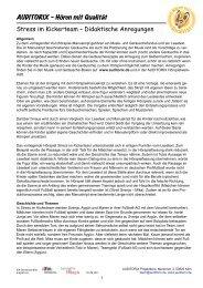 PDF: Stress im Kickerteam, Didaktische Anleitung IV - Auditorix