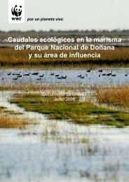 Caudales ecológicos en la marisma del Parque Nacional de ... - WWF
