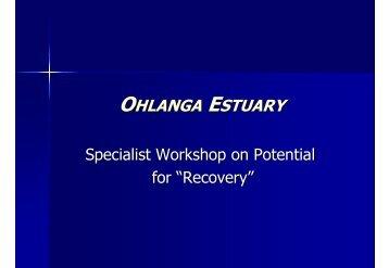 Presentation on Ohlanga Estuary - KZN Development Planning