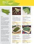 Syngenta Vegetables - Page 4