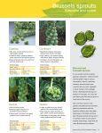 Syngenta Vegetables - Page 7