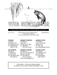 VFFA February 2008 - Victorian Fly Fishers' Association