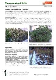 Infos für den Garte- und Landschaftsbau 01/2011 - Berlin.de