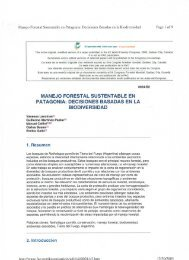 Manejo Forestal Sustentable en Patagonia ... - Dr. Carlos Busso