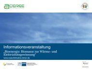 aderee - Exportinitiative Erneuerbare Energien - BMWi