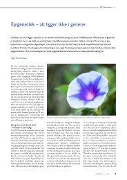 Last ned pdf av denne artikkelen slik den stod på trykk i GENialt 2 ...