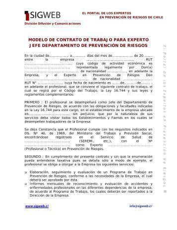 Modelo de Contrato de Trabajo para Experto Jefe ... - Sigweb