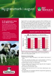 Ny græsmark i august - DLF-TRIFOLIUM Denmark